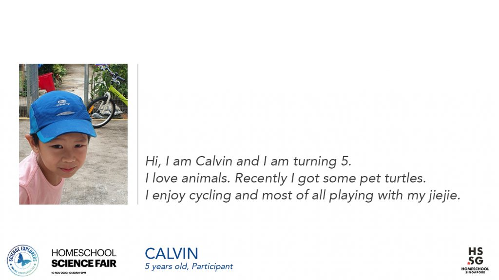 This image has an empty alt attribute; its file name is Calvin-2-1024x576.jpg